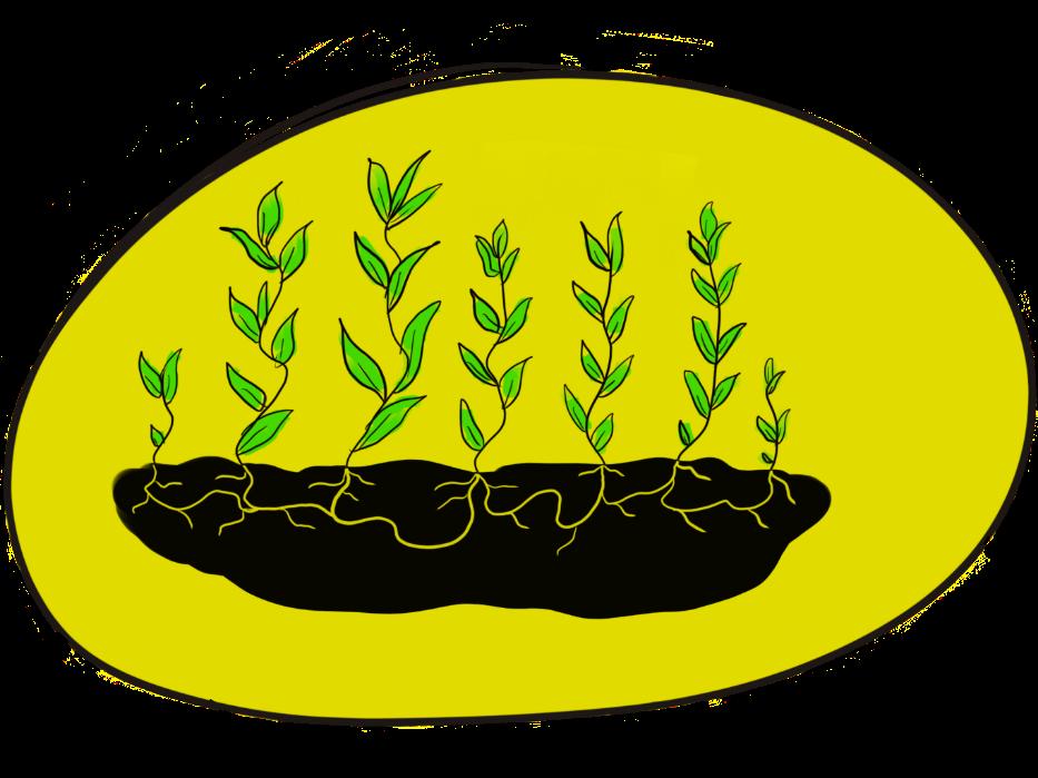 Holt læringstun: dyrke